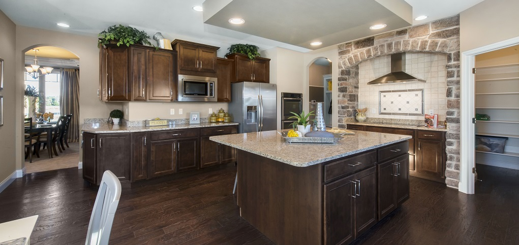Home of the Week Forest Plan by Lombardo Homes