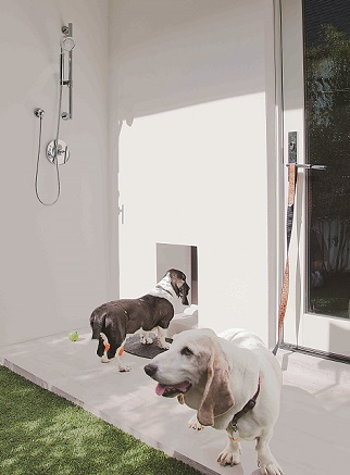 Pet Amenities_Phil Kean_Outdoor Washing Station_Doggy Door